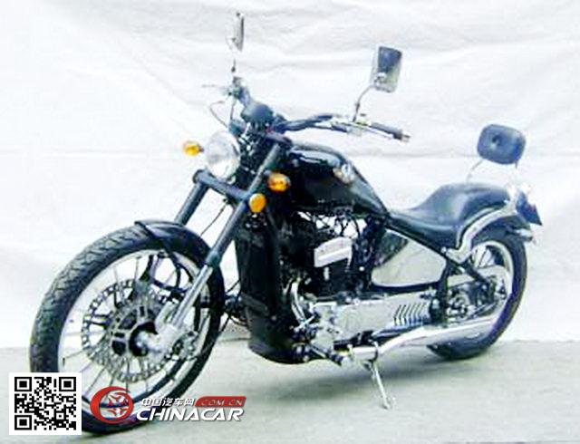 dd350e-6c大地鹰王牌两轮摩托车图片|中国汽车网
