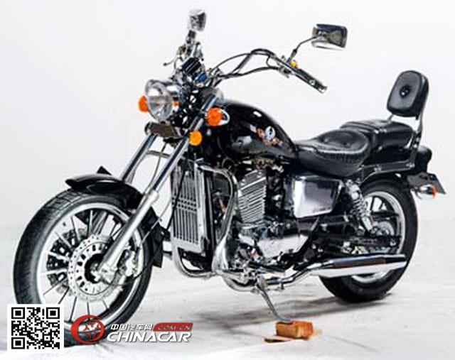 大地鹰王牌dd250e-9a型两轮摩托车图片