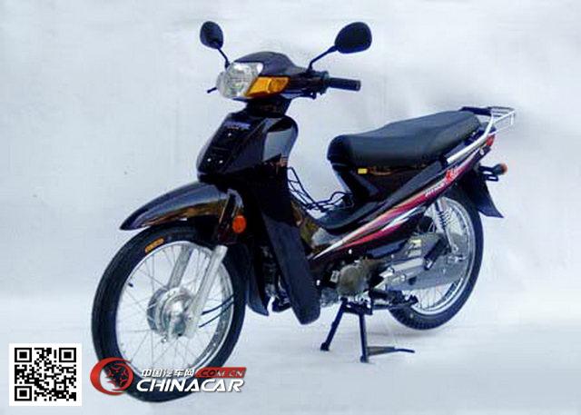 大阳牌dy110-2e型两轮摩托车图片