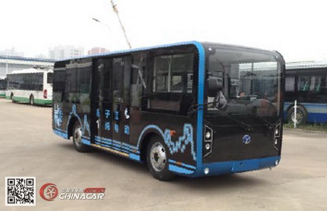 扬子江牌WG6610BEVH型纯电动城市客车图片1