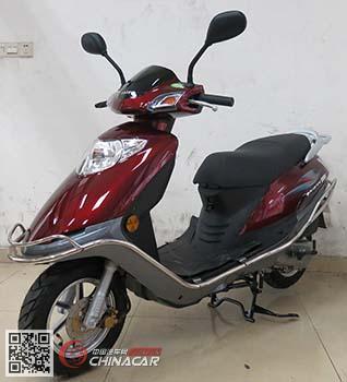 DF100T-5G型大福牌两轮摩托车图片1