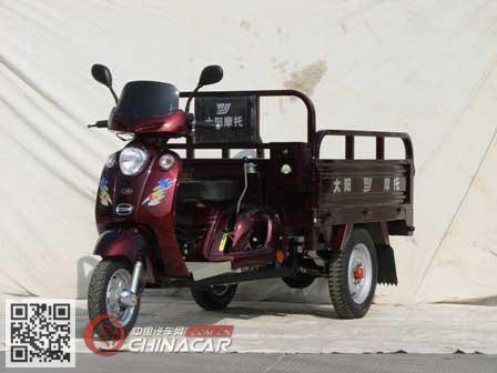 大阳牌DY110ZH-A型正三轮摩托车图片