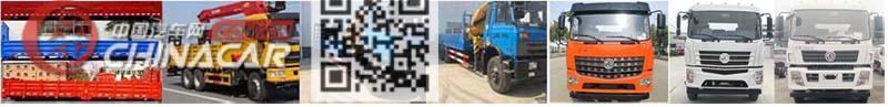 炎帝牌SZD5250JSQE5型随车起重运输车图片4