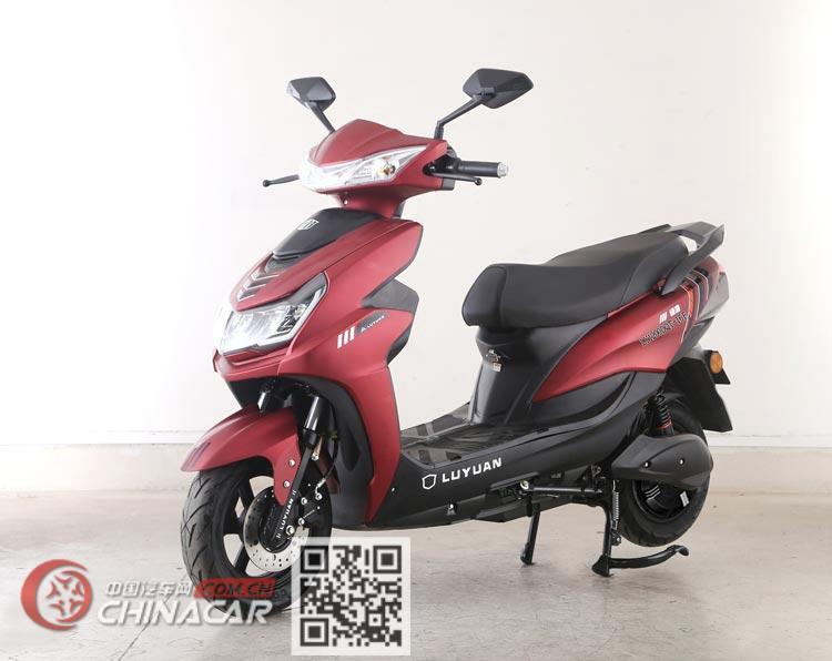 绿源牌LY1200DT-16F型电动两轮摩托车图片2