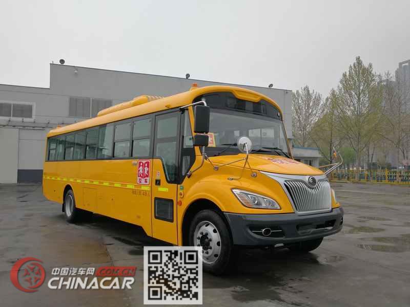 宇通牌ZK6995DX61型中小学生专用校车图片1