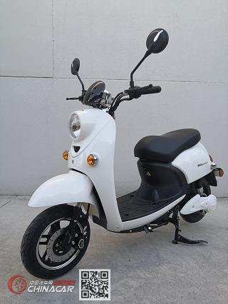 速派奇牌SPQ500DQT-2型电动两轮轻便摩托车图片1
