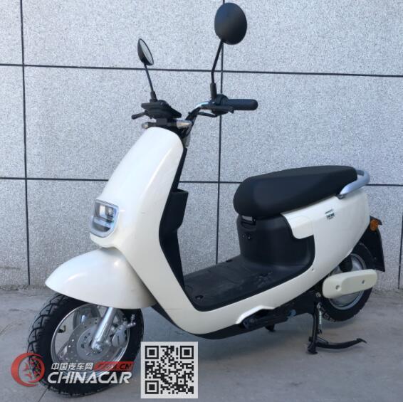 绿能牌LN600DQT-5型电动两轮轻便摩托车图片1