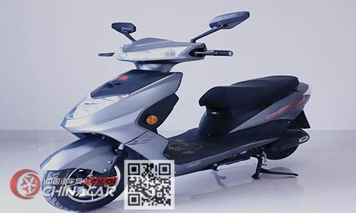 元帅牌YS1000DQT型电动两轮轻便摩托车图片1