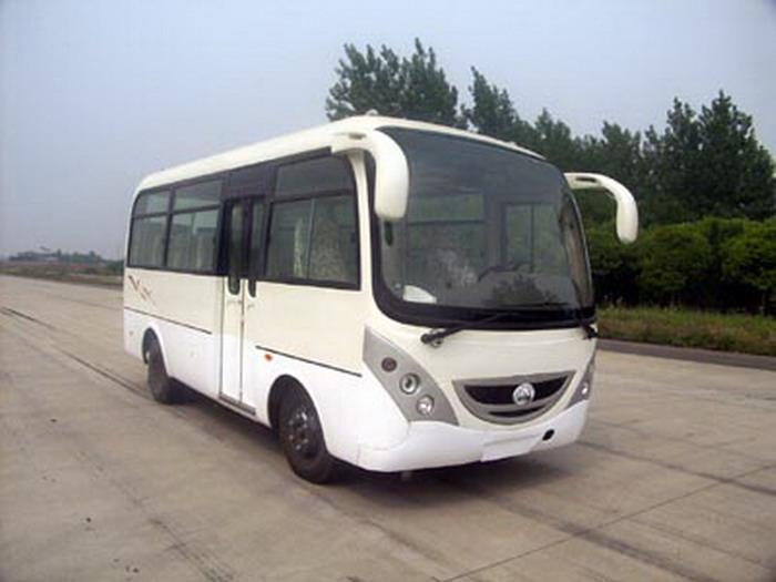 6米|10-19座凌宇轻型客车(CLY6607D)
