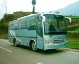 7.9米|20-30座达宇客车(DYQ6790A1)