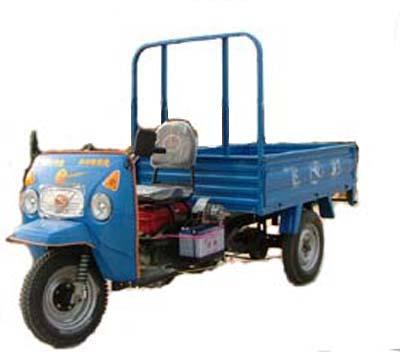 飞彩1-2米农用车