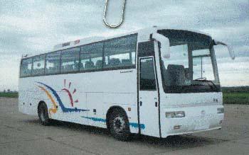 11.4米|30-47座黄海大型旅游客车(DD6112H6B)