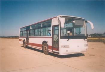 12米|25-52座黄海大型城市客车(DD6121HSBA)