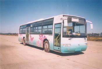 12米|25-52座黄海大型城市客车(DD6121HSBB)