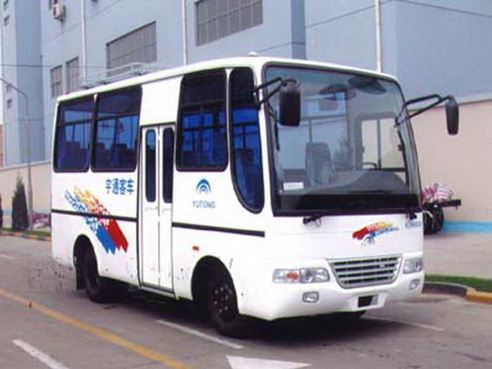 6米|13-16座凌宇轻型客车(CLY6602D)