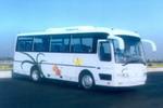 8米|19-34座白云客车(BY6800A9)