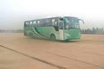 11.7-12米|21-53座神野豪华旅游客车(ZJZ6120P)