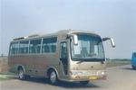 8米|29-33座德金马客车(STL6800RG)