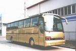安凯牌HFF6123K01客车图片