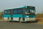 10.1米|31-39座扬子江客车(WG6100A3)