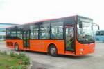 11.6米|29-41座五洲龙城市客车(FDG6121CGC3)