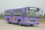10.5米|35-45座友谊客车(ZGT6101D)