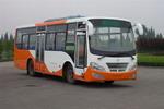 10米|24-45座川马客车(CAT6101ECNG)