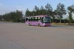 12米|9-32座北方豪华卧铺客车(BFC6125W-1)