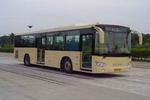 11.6米|29-43座巨鹰城市客车(SJ6120SG)