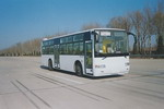 11.1米|27-43座黄海大型城市客车(DD6111HSB)