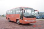 8.5米|24-37座金龙旅游客车(KLQ6856Q)