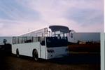 12米|24-53座黄海客车(DD6124K01)