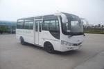 6米|14-19座凌宇轻型客车(CLY6600DE5)