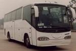 伊利萨尔(IRIZAR-TJ)牌TJR6120D08A型大型豪华旅游客车图片