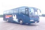 11.6米|30-51座白云豪华旅游客车(BY6121C)