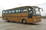飞燕牌SDL6120ZBNC大型豪华旅游客车图片