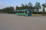 12米|9-36座北方豪华卧铺客车(BFC6125W)