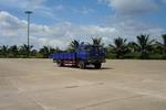 力帆国二单桥货车131马力4吨(LF1090G)