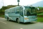 7.9米|24-32座达宇客车(DYQ6790H1)