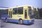 9.6米|28-43座恒通客车客车(CKZ6950EB)
