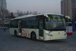 11.8米|20-42座中大城市客车(YCK6116HC)