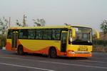 10.5米|10-42座西域城市客车(XJ6103G)