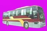 12米|27-44座华泰格林伯德豪华客车(SDH6123A)