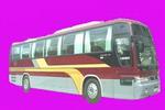 12米|27-43座华泰格林伯德豪华客车(SDH6123B)