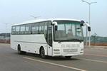 11.5米|24-54座三湘客车(CK6115)