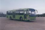 10.7米|25-50座红桥城市客车(HQK6101G1)