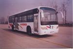11.5米|24-48座黄海客车(DD6113K10)