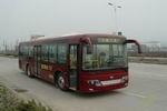 10.5米|24-43座飞碟城市客车(FD6105GJ)