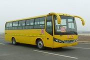 9米|24-77座凌宇小学生校车(CLY6902DEA)