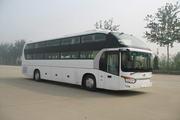金龙牌XMQ6129DPD3D型卧铺客车图片